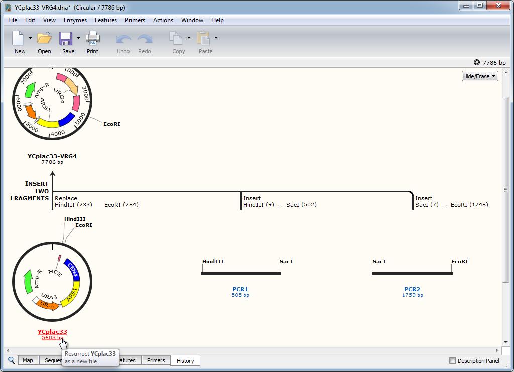 Embedded ancestor sequences