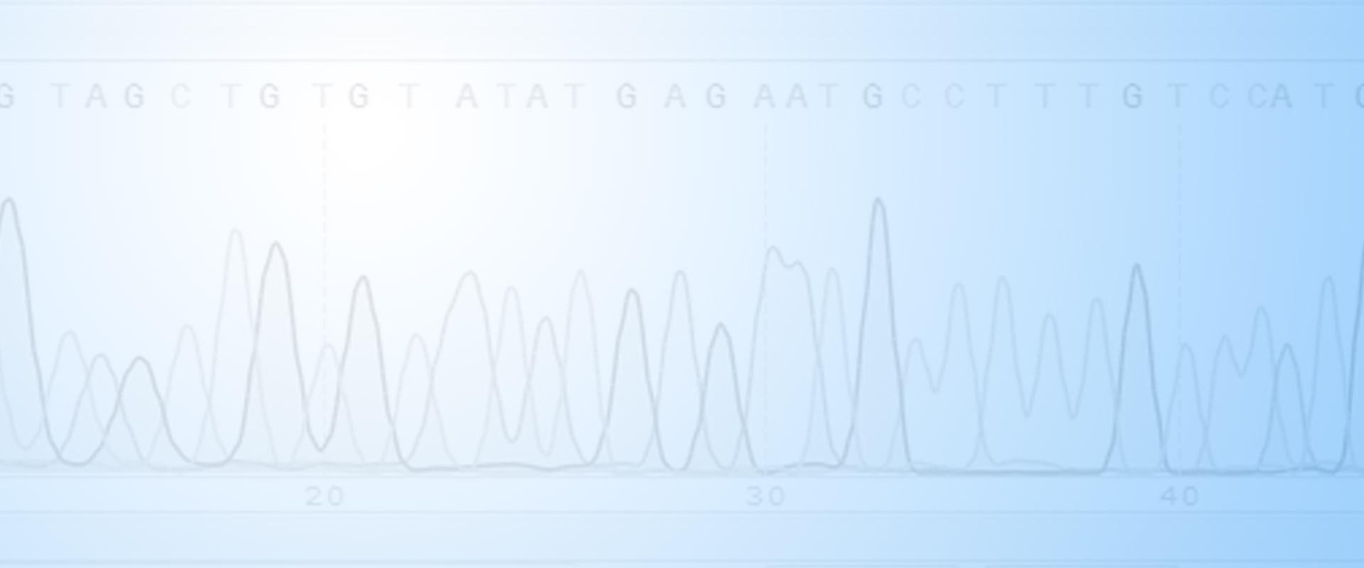 SnapGene | Software for everyday molecular biology